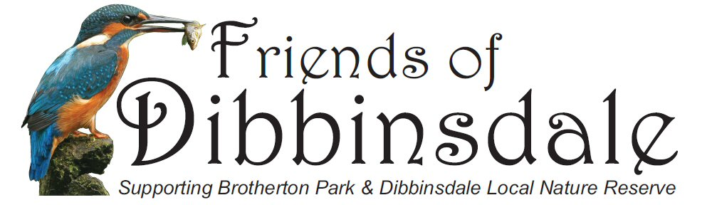 Friends of Dibbinsdale logo